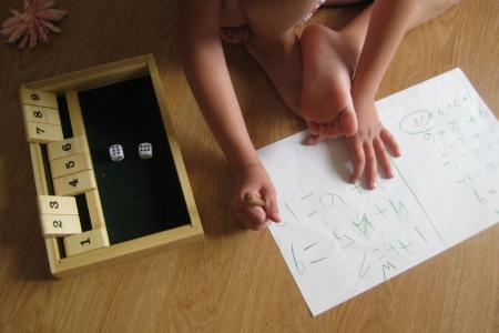 Shut the box / Fermez la boite